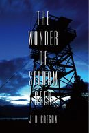 The Wonder of Seldom Seen
