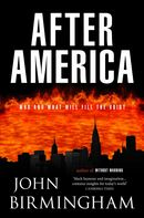 After America: The Disappearance Novel 2